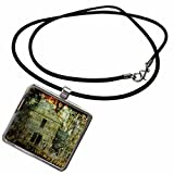 3dRose Cassie Peters Abandoned - Rural Decay by Angelandspot - Necklace With Rectangle Pendant (ncl_108214_1)
