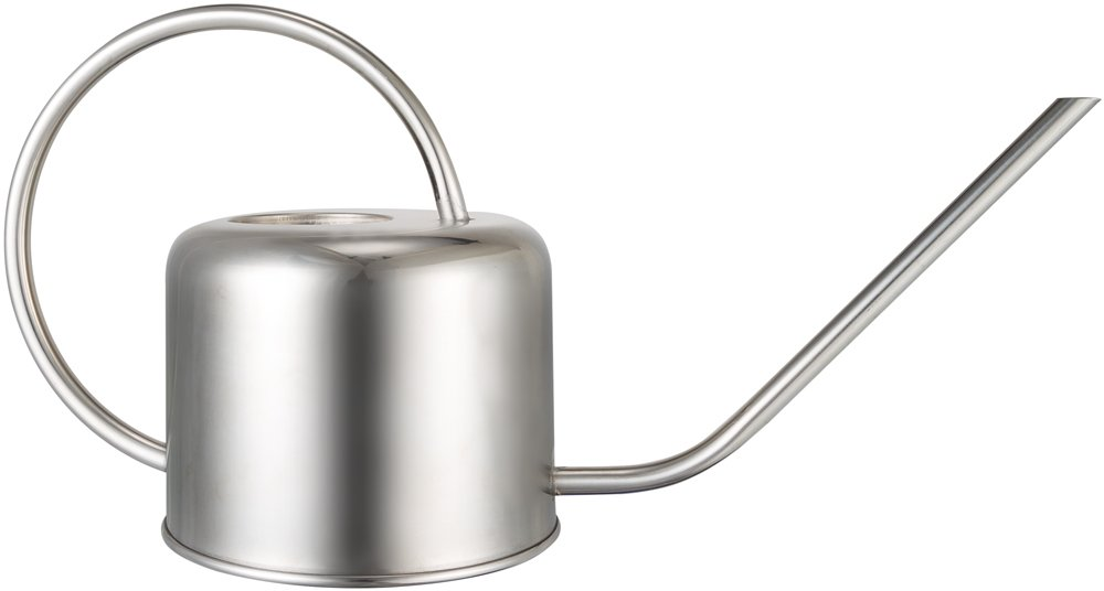 Mkono Stainless Steel Watering Can Small Water Can for Indoor Outdoor,900ML