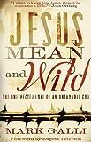 Jesus Mean and Wild, Mark Galli, 0801012848