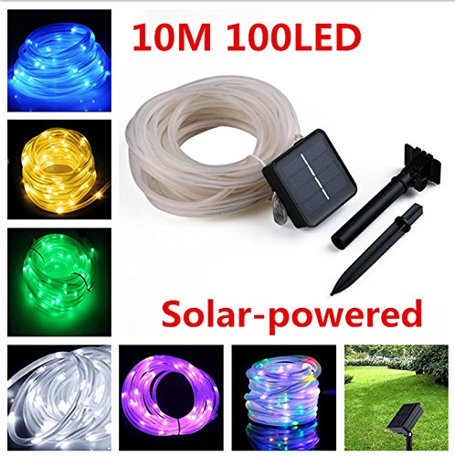 Solar Powered Lights For Crafts in Florida - 7