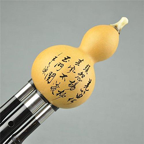 Profi Qualität abnehmbare Hulusi natur Kürbisflasche Flaschenkürbis Holz Flöte Wind Muscial Instrument Free Reed Schlüssel BB