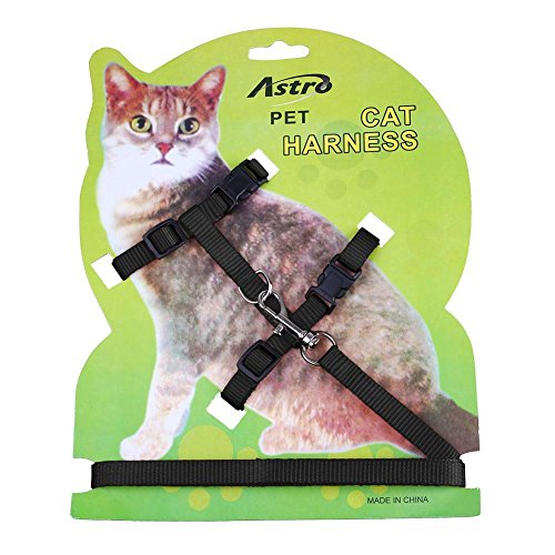 Pecute Pet Cat Lead Leash Halter Harness Kitten Nylon Strap Belt Safety Rope Adjustable Cat Dog Collar (Black)
