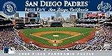 San Diego Padres Mlb Stadium 1000 Piece Puzzle