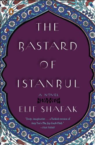The Bastard of Istanbul cover