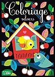 Cartes velours maison oiseaux (Cartes velours à colorier)