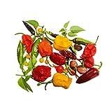 Ultra Hot Mix Peppers -Chili Mix- Hot Pepper -> 50 Seeds by -Samenchilishop-