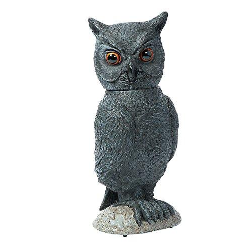 Halloween Animated Owl -