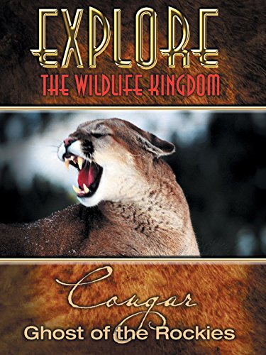 (Explore The Wildlife Kingdom: Cougar - Ghost of the Rockies)