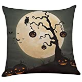 Software : Kimloog Halloween Linen Square Throw Pillow Case Bat Pumpkin Sofa Decorative 18 x 18 Inch Cushion Cover (E)