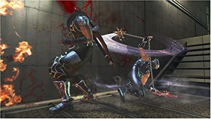 Amazon.com: Ninja Gaiden II: Artist Not Provided: Video Games