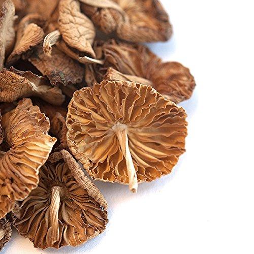 Spice Jungle Mousseron Mushrooms, Whole (Dried) - 16 oz. by SpiceJungle