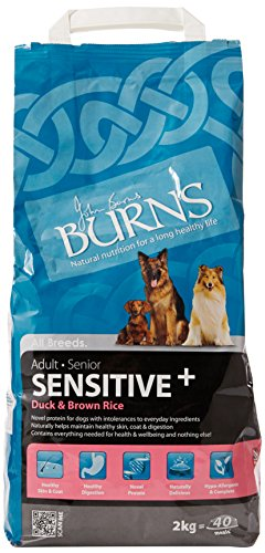 Burns Pet Nutrition - Dog - Adult - Duck & Brown Rice 2kg Dry Food
