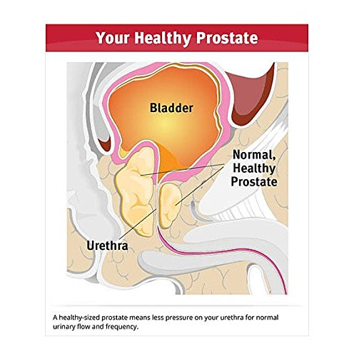 Dr. Sinatra's Prostate Solutions Supplement, 60 softgels (30-day supply) by Dr. Sinatra (Image #4)