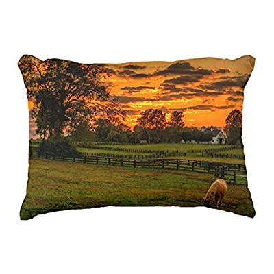Wecye USA,Lexington,Kentucky.Lone Horse at Sunset Decorative Throw Pillow Case Cushion Cover 18x18 inch