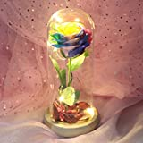 Romantic Glass Rose Wedding Decoration Home Furnishing Colorful Glowing Roses Glass Cover Eternal Flower 1002-2 Rose Colorful * Powder Flower (64B)