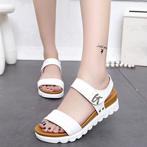 Price comparison product image Hot Sales Flat Shoes Women, Haoricu Summer Sandals Women Fashion Leather Flat Student Sandals Comfortable Ladies Platform Shoes (US:8.5,  White)