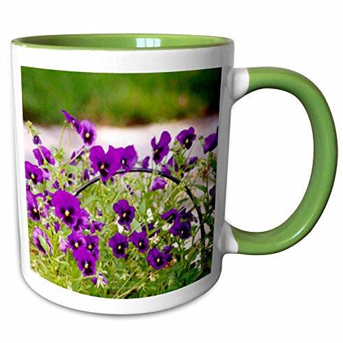 3dRose Lee Hiller Photography Washington DC - Basket of Purple Pansies - 11oz Two-Tone Green Mug (mug_5017_7) (Washington Dc Gift Basket)