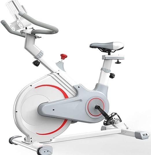 CHUN LING Bicicleta de Spinning para Mujeres, Volante de Acero ...