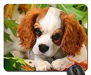 Enjoying the autumn Mouse Pad, Mousepad (Dogs Mouse Pad, 10.2 x 8.3 x 0.12 inches)