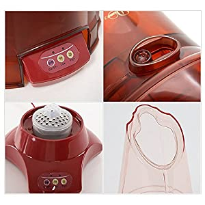 Diana Steam Seat SJC-2200 Herbal Steamer 220V Face & Underbody Health Steam Spa (Steam Seat + Urethane Cushion + Mugwort Tea Bag)