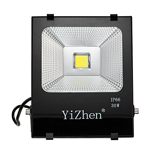 30W New Craft LED Flood Lights, Super Bright Outdoor Security Lights, 150WHalogen Bulb Equivalent, IP66 Waterproof, 2500lm, 6500K, Daylight White,Floodlight (Daylight White)