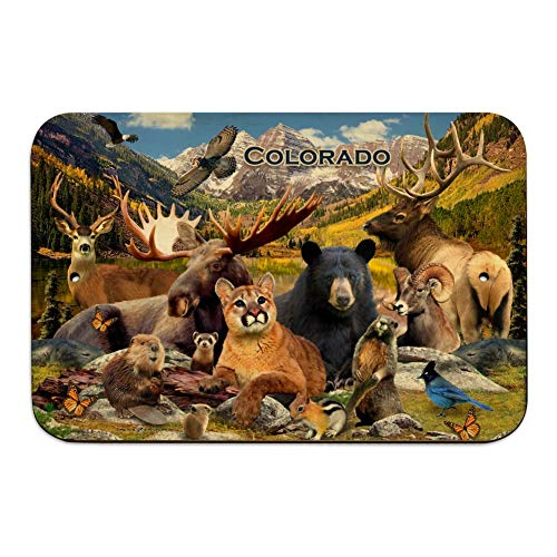 GRAPHICS & MORE Colorado Mountains Lake Wildlife Animals Beer Moose Elk Cougar Home Business Office Sign - Wood - 6