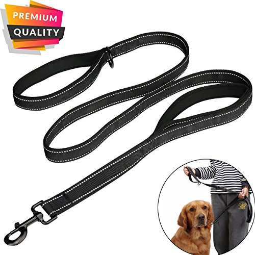 AINIMO Large dog leash, Double Handles No Pull Heavy Duty Strong Nylon Dog Leash (Black)