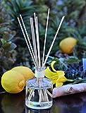 MINX Fragrances 24hr Prime Deal! Lemongrass & Ginger ENERGIZE Aromatherapy oil Reed Diffuser gift set Fresh Lemongrass, Ginger, Cedar & Mandarin Orange | Great Scent for the Home or Office!