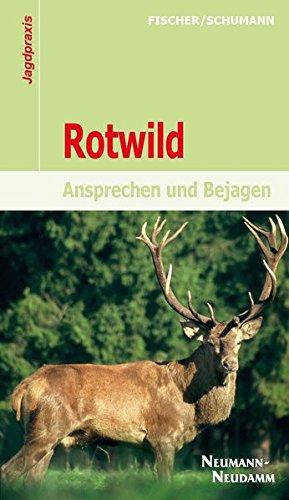 Rotwild: Ansprechen und Bejagen