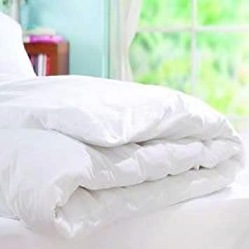 and mould your dust from proof protector duvet protect mite waterproof fungus allergon