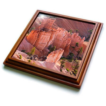 3dRose trv_260212_1 Utah, Bryce Canyon National Park, Hoodoo Formations Trivet with Tile, 8 by 8''