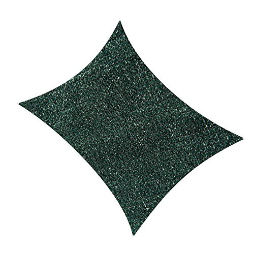 Cool Area Rectangle 13' X 19'8'' Sun Shade Sail for Patio in Color Green by Cool Area