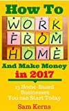 Bargain eBook - How to Work From Home and Make Money in 2017