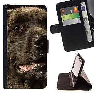 KingStore / Leather Etui en cuir / Sony Xperia M2 / Perro perdiguero revestido plano Perro Negro
