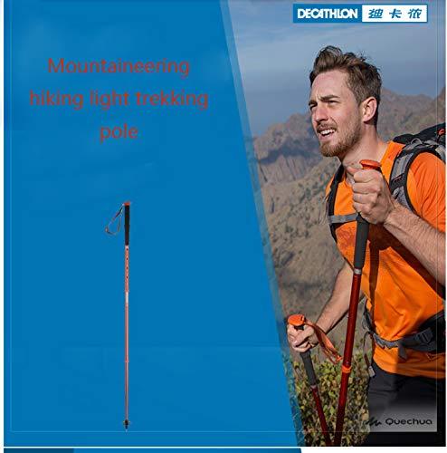 Muletas bastón de Trekking al Aire Libre Ligero telescópico ...
