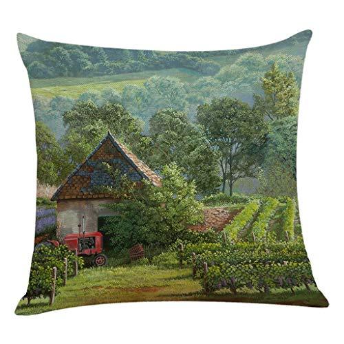 Littay Throw-Pillow-Covers, Cotton Linen Square Home Decorative Throw Pillow Case Sofa Waist Cushion -