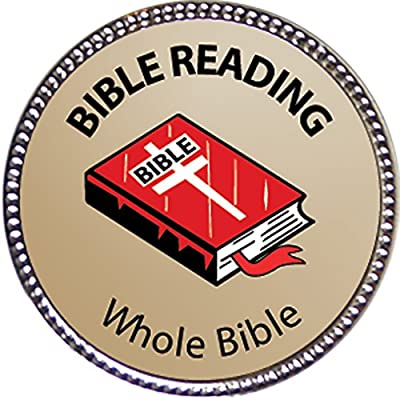 Keepsake Awards Whole Bible Bible Reading Award, 1 inch Dia Silver Pin Bible Reading Achievements Collection: Toys & Games