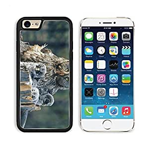 Owl Face Fur Chicks Predator Apple iPhone 6 TPU Snap Cover Premium Aluminium Design Back Plate Case Customized Made to Order Support Ready Liil iPhone_6 Professional Case Touch Accessories Graphic Covers Designed Model Sleeve HD Template Wallpaper Photo Jacket Wifi Luxury Protector Wireless Cellphone Cell Phone