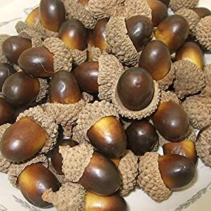 ONWON 100pcs Simulation Artificial Lifelike Small Acorn with Natural Acorn Cap for DIY Decoration Crafting Home House Kitchen Decor - Fake Fruit Props Acorns 3