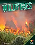 Wildfires, Rebecca Rowell, 1617839434