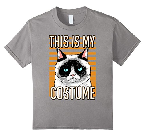 Kids Grumpy Cat Halloween This Is My Costume Graphic T-Shirt 12 Slate for $<!--$19.99-->