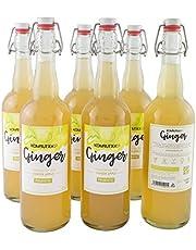 KOMBUTXA TE KOMBUCHA BEBIDA ECOLOGICA - 6x750ml te fermentado bio organic tea bebida energetica sin azucar añadido (Ginger (Jengibre y Manzana))