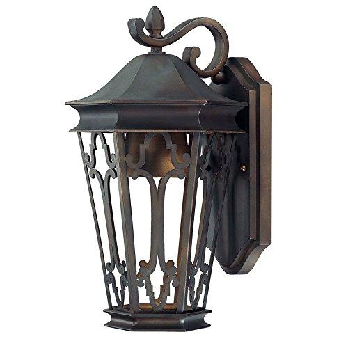 Dark Sky 1 Light Outdoor Wall Lantern Size: 15.5