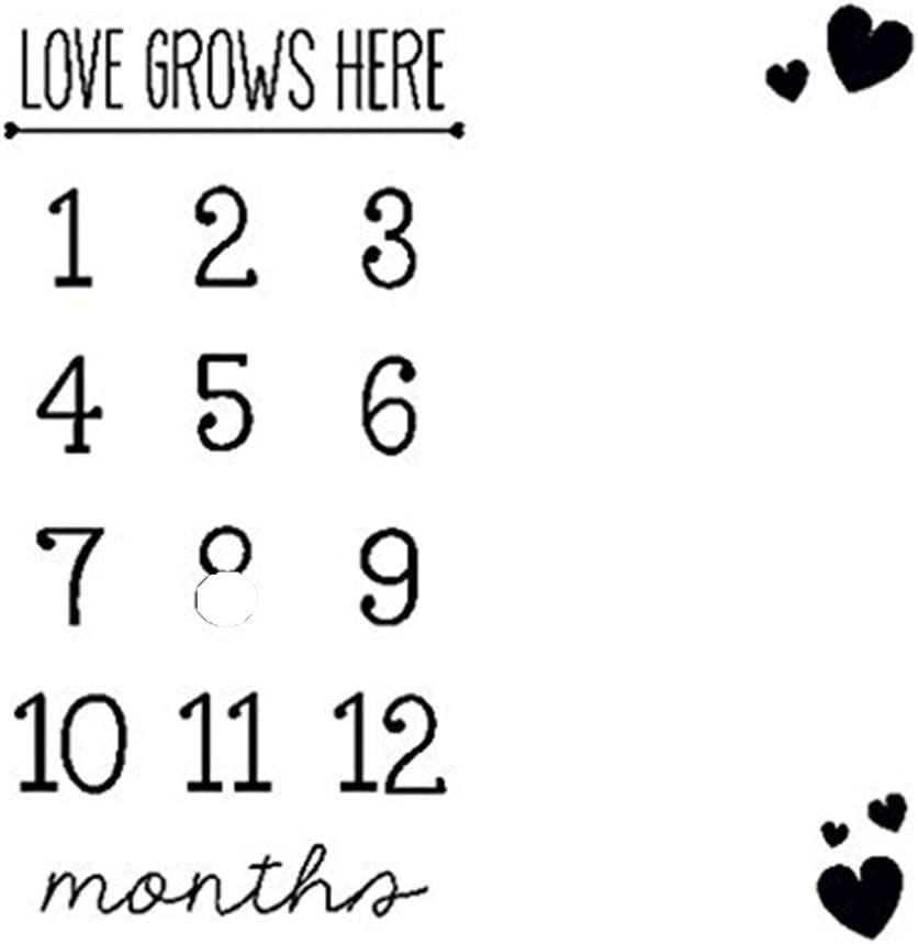 Newborn Monthly Growth Milestone Blanket Letter Prop Photography Background US