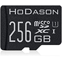 Memory Card 256GB with SD Adapter (Standard Packaging) H/TF/256 - Class 10
