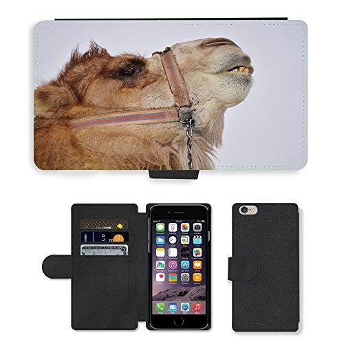 "Just Phone Cases PU Leather Flip Custodia Protettiva Case Cover per // M00128528 Camel animal Mammifère Desert Safari // Apple iPhone 6 PLUS 5.5"""