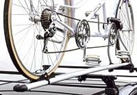 Peruzzo Heckträger Tandem Fahrradträger Roma, Grau, 11102005