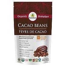 Ecoideas Organic Ft Cacao Beans, 454g