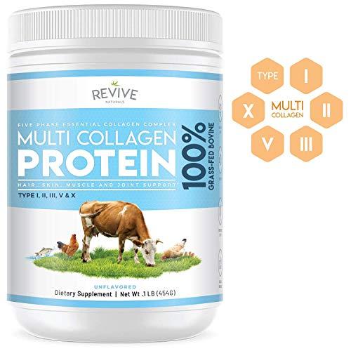 Multi Collagen Hydrolyzed Protein Powder (16oz) – Types I, II, III, V & X – Grass Fed Bovine, Wild Caught Fish, Grass Fed Bovine Bone Broth, Chicken Bone Broth & Eggshell, Non-GMO, Gluten-Free.