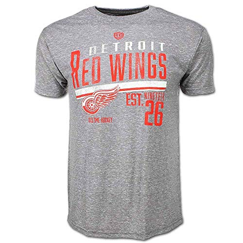 Detroit Red Wings Gray Combine T-Shirt, Gray, Medium (Detroit Tigers Long Sleeve)